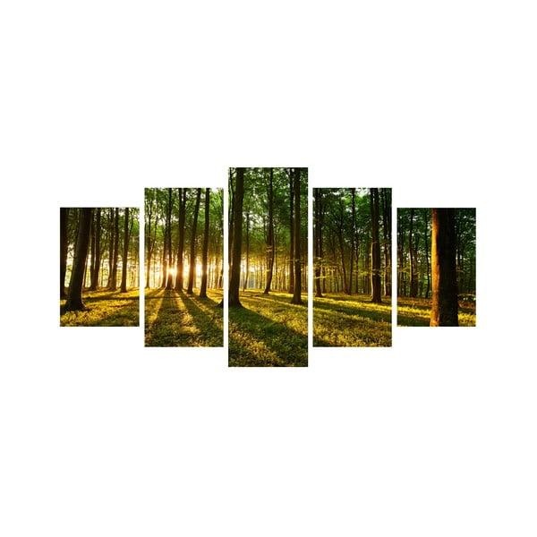 5dílný obraz Mezi stromy