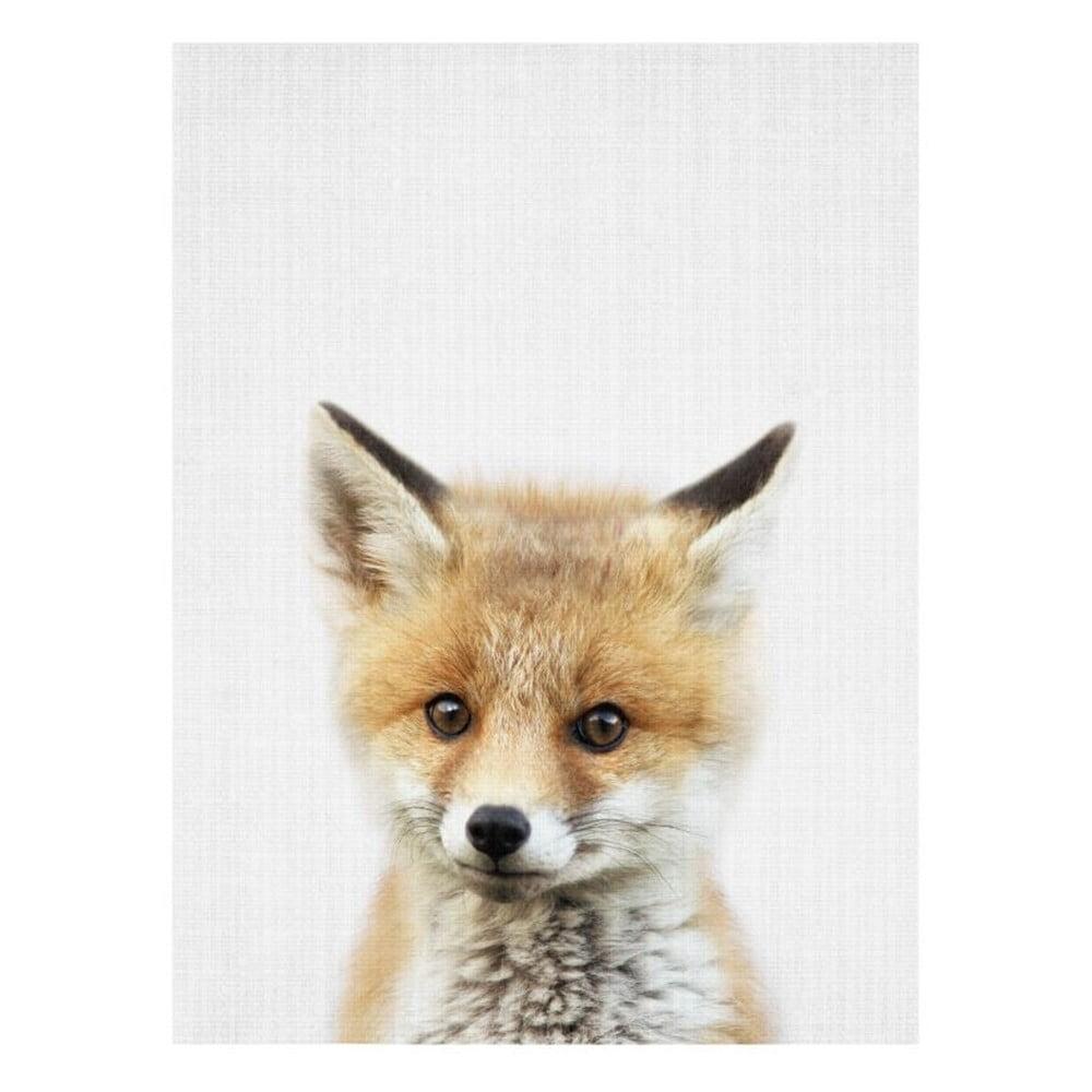 Plakát Blue-Shaker Baby Animals Fox, 30 x 40 cm