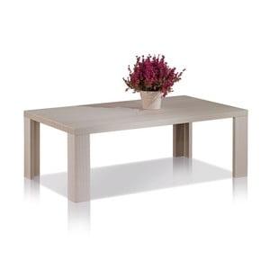 Kávový stolek Coffee Table 100x60 cm, modřín