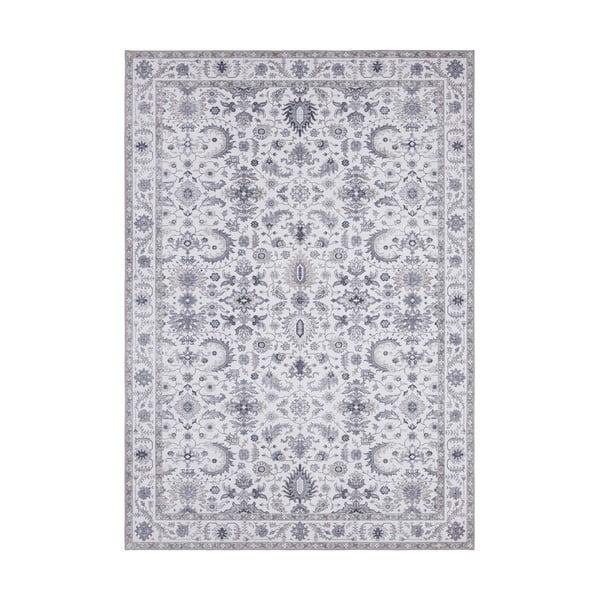 Szary dywan Nouristan Vivana, 80x150 cm
