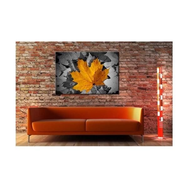 Fotoobraz Barvy podzimu, 90x60 cm