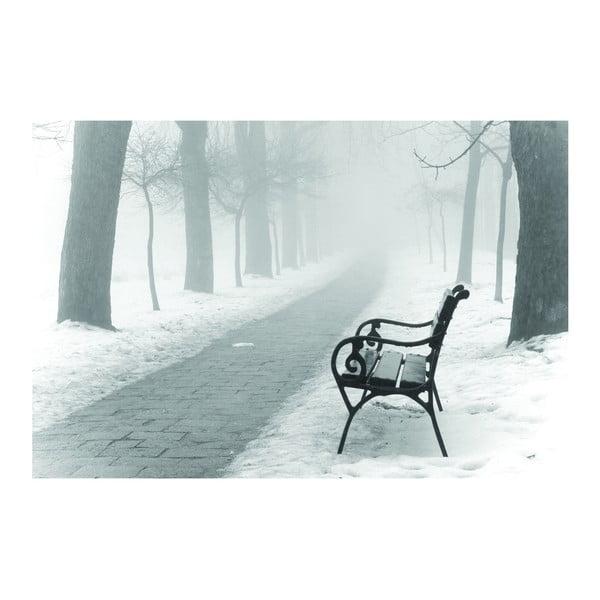 Fotoobraz Lavička v parku, 90x60 cm