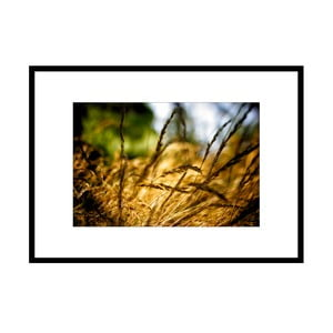 V trávě, autorská fotografie Borise Stojanova (černý rám)