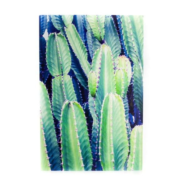 Nástenný obraz Velvet Atelier Cactus, 40×60cm
