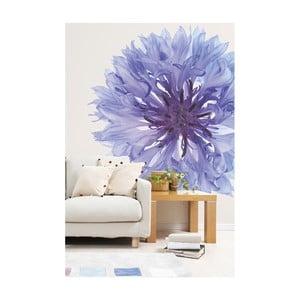 Velkoformátová tapeta Single Flower