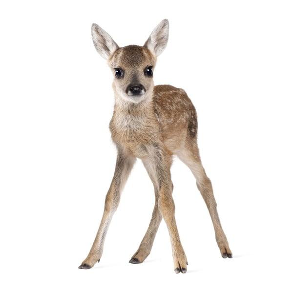 Autocolant pentru perete Dekornik Deer Lucy, 55 x 88 cm