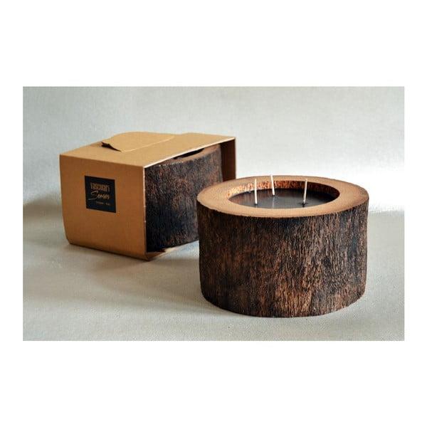Palmová svíčka Legno Black s vůní vodního květu, 100 hodin hoření