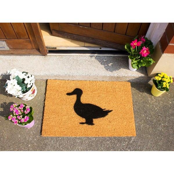 Rohožka Artsy Doormats Duck,40x60cm