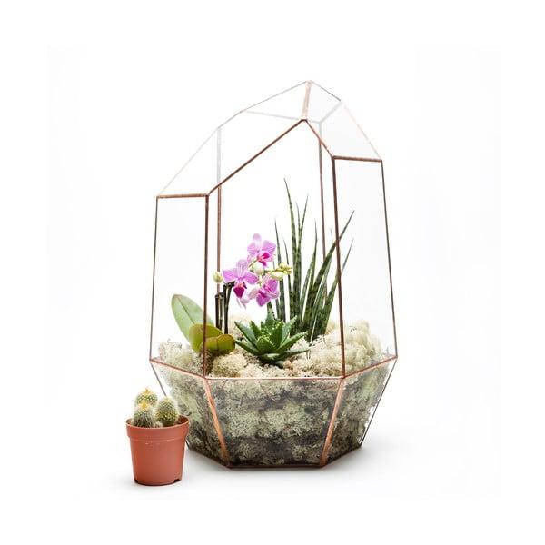 Terárium s rostlinami Urban Botanist Supersize Gem, světlý rám