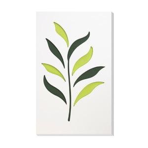 Nástěnná dekorace Vialli Design C-tru Herbs