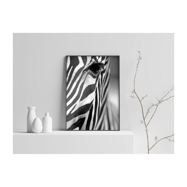 Plakát Imagioo Zebra Texture, 40x30cm