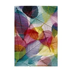 Koberec Universal Colors Multi, 160x230cm