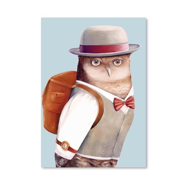 Plakát Owl, 30x42 cm