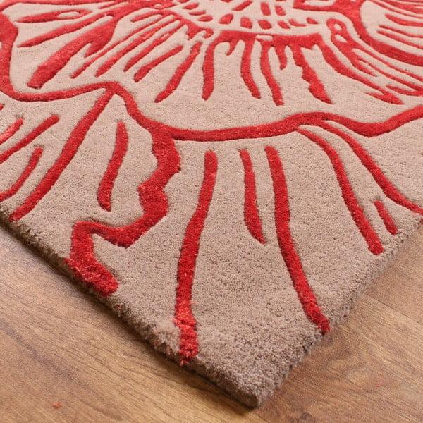 Vlněný koberec Liberty Beige Red 160x230 cm