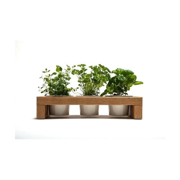 Stojánek na bylinky Spiceboard Oak