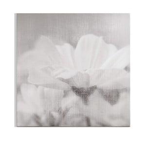 Obraz Graham & Brown Daisy Daydream, 70 x 70 cm