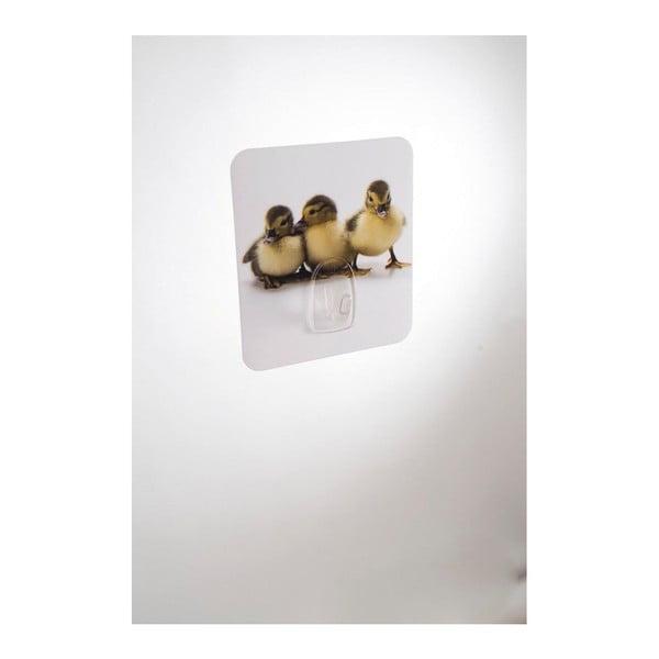 Nástěnný háček Compactor Magic Ducks