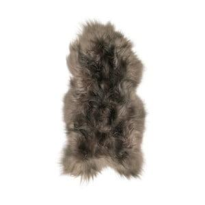 Šedohnědá ovčí kožešina s dlouhým chlupem Arctic Fur Ptelja, 100x55cm