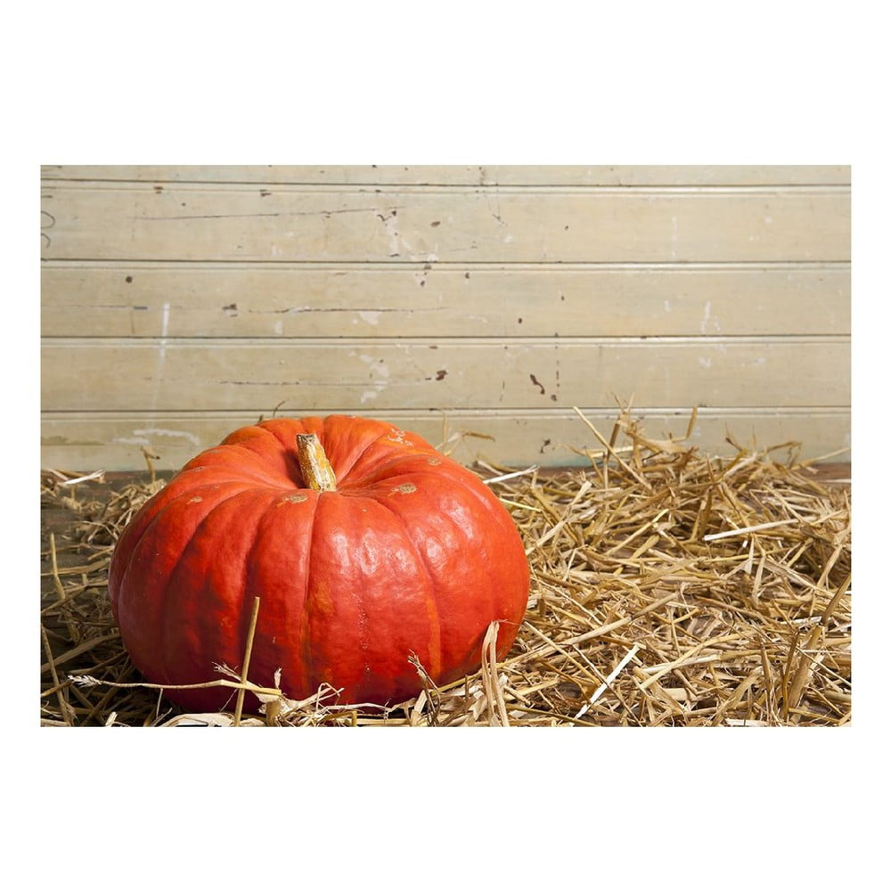 Vinylový koberec Pumpkin, 52 x 75 cm