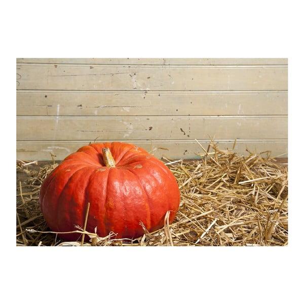 Vinylová předložka Pumpkin, 52x75 cm