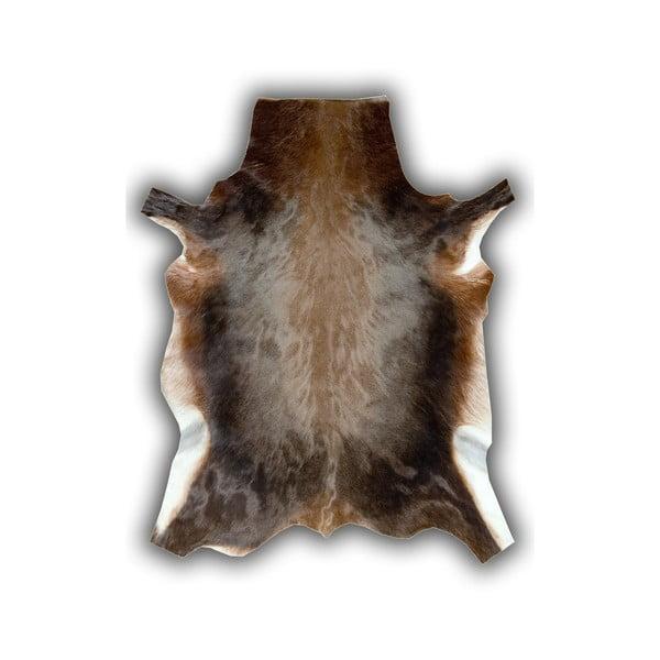 Kožená předložka z buvolce Pipsa Blesbok, 120x90 cm