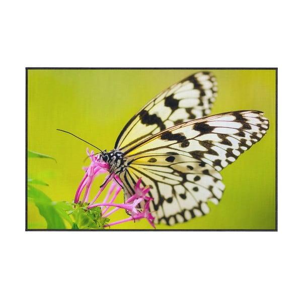 Zelený koberec Oyo home Butterfly, 100x140cm