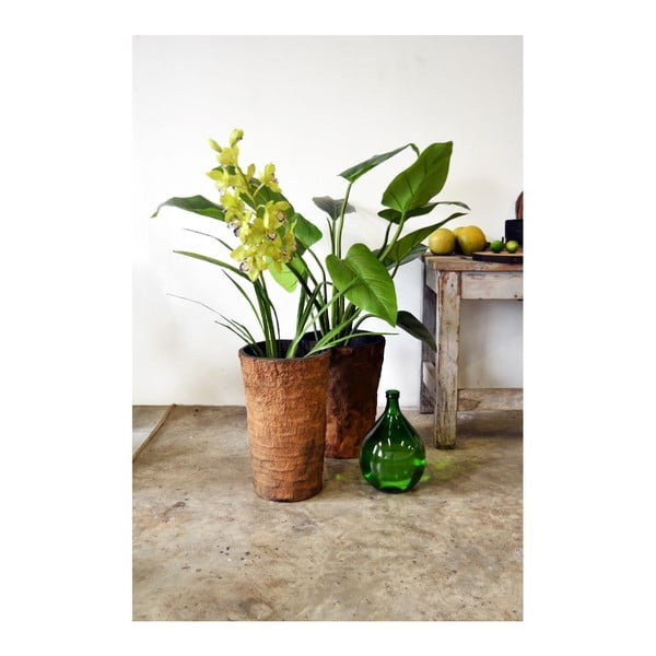Palmový květináč Natural