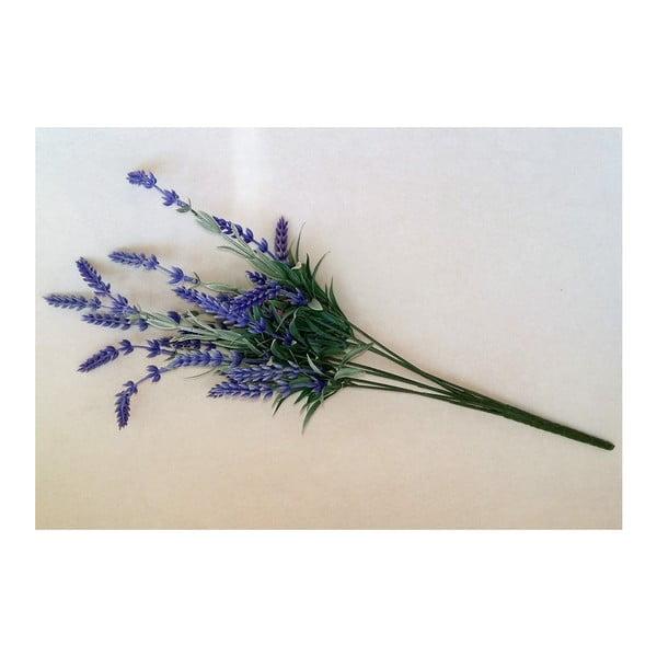 Levander művirág - Dakls