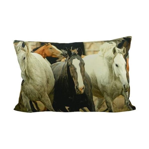 Polštář Horses Free 60x40 cm