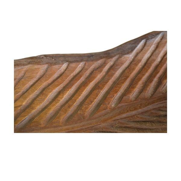 Tác ve tvaru listu Moycor Erosi