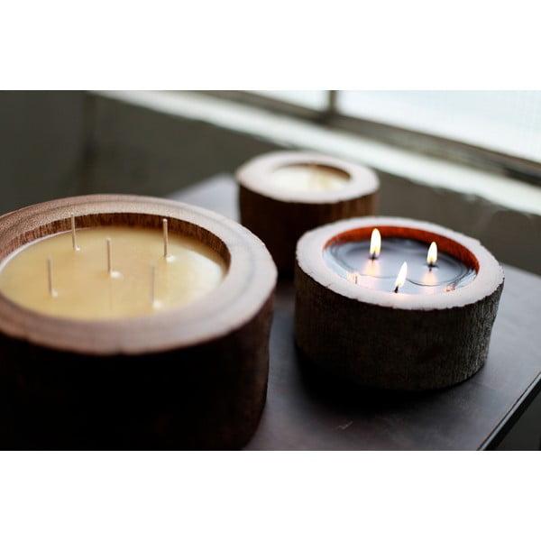 Palmová svíčka Legno Palma s vůní exotického ovoce, 40 hodin hoření