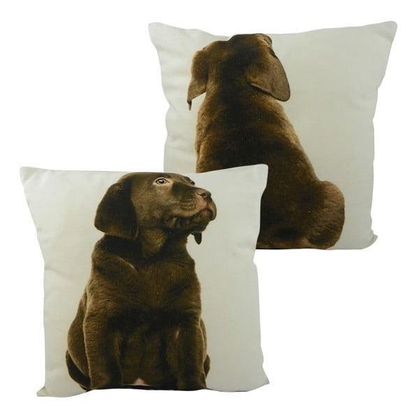 Polštář Double Labrador Brown 33x33 cm