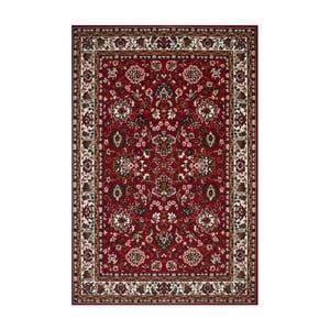 Červený koberec Kayoom Sahel,160x230cm