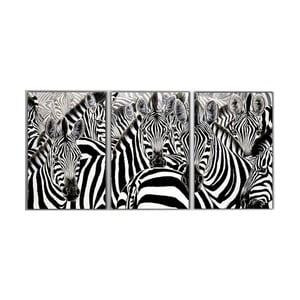 3dílný obraz Zebras, 45x90 cm