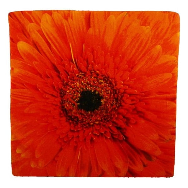 Sedák Flower Orange 50x50 cm