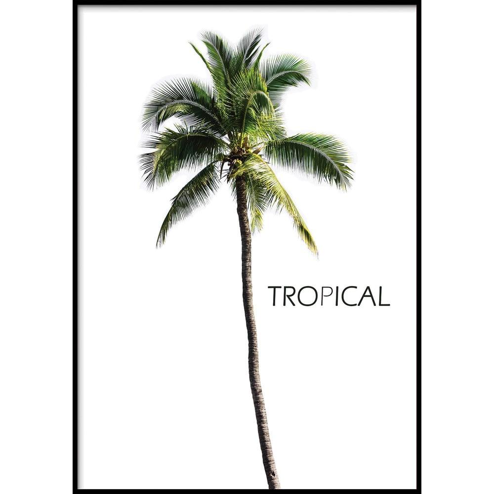 Nástěnný obraz BERMUDA/TROPICAL, 40x50cm