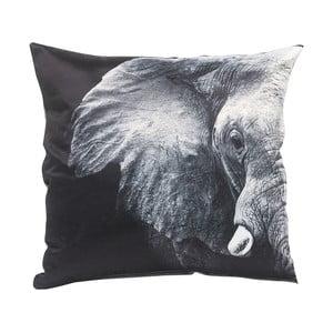 Polštář Elephant, 45x45 cm