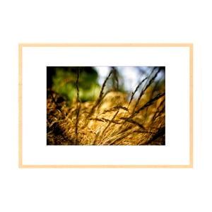 V trávě, autorská fotografie Borise Stojanova (přírodní olšový rám)