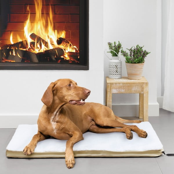 Fűthető kutyaágy, 65 x 82 cm - InnovaGoods