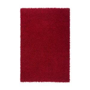 Červený koberec Obsession Riviera, 170 x 120 cm