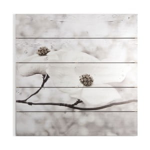 Dřevěný obraz Graham & Brown Serenity Blossoms, 60 x 60 cm