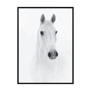 Plakát Nord & Co Horse, 21 x 29 cm