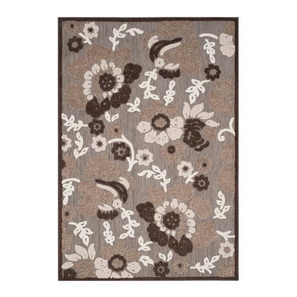Oxford barna kültéri szőnyeg, 160x99 cm - Safavieh