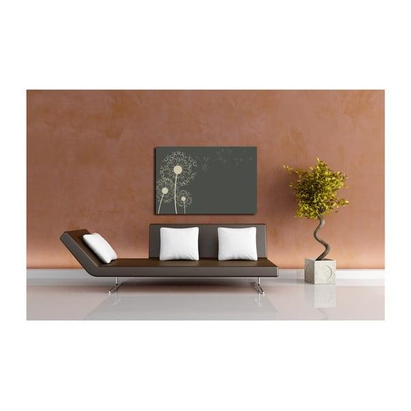 Obraz Chmýří, 40x60 cm
