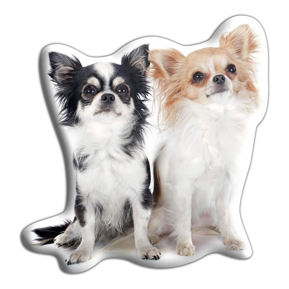 Polštářek Adorable Cushions Dvě čivavy