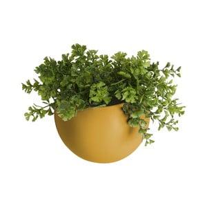 Matně okrově žlutý nástěnný keramický květináč PT LIVING Globe