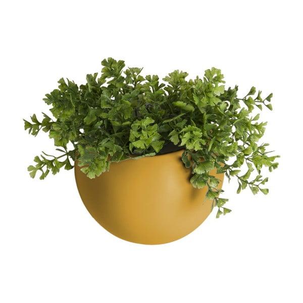 Matne okrovožltý nástenný keramický kvetináč PT LIVING Globe