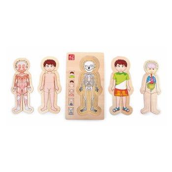 Jucărie din lemn Legler Anatomy Boy de la Legler