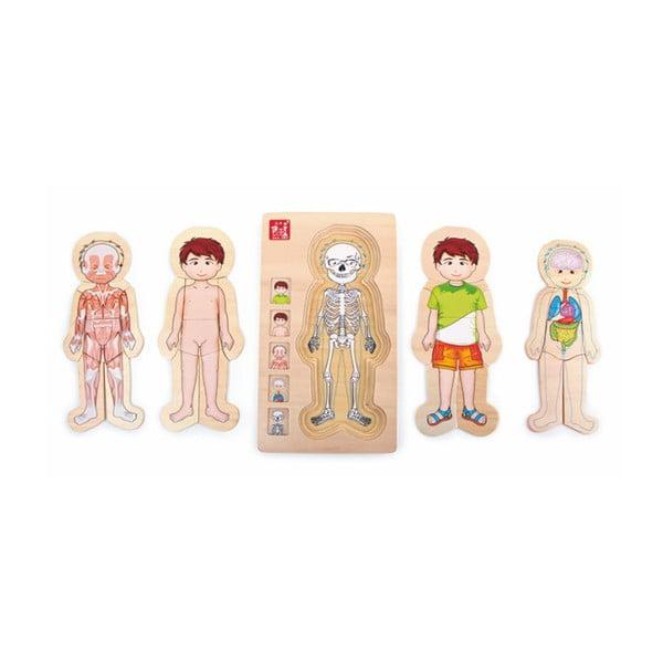 Jucărie din lemn Legler Anatomy Boy