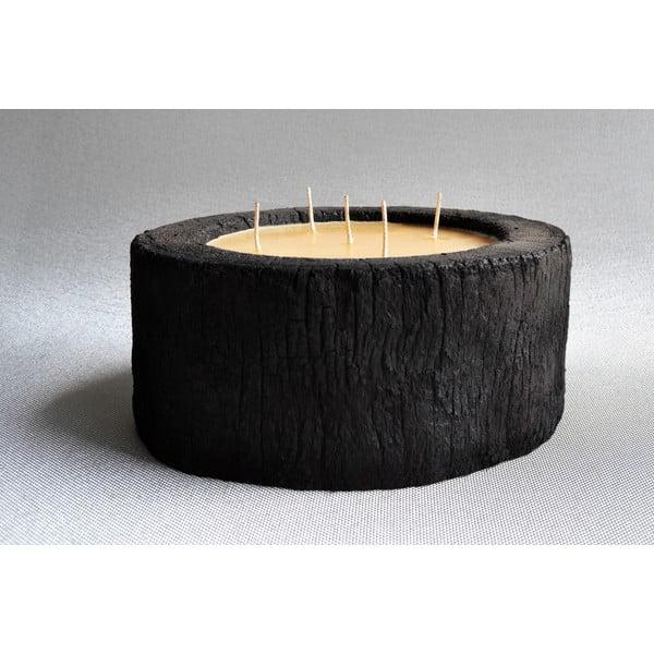 Palmová svíčka Legno Bee se včelím voskem, 140 hodin hoření